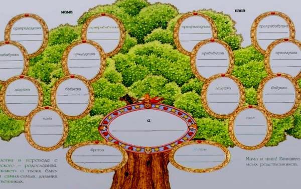 Как создать генеалогическое